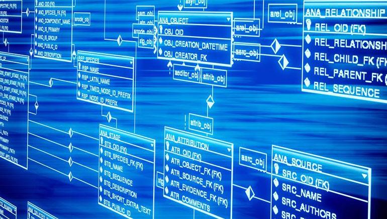 Verkkokasinon ohjelmisto